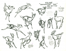 BambiModelSheet16
