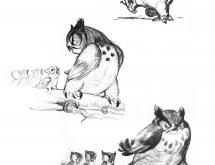 BambiModelSheet7