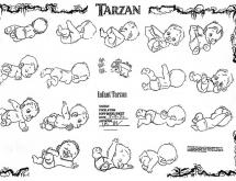 TarzanModelSheet19