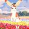 Ghibli-Oregon-Header
