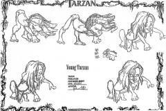 TarzanModelSheet20