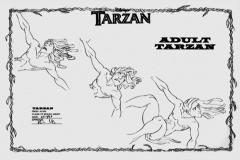 TarzanModelSheet27