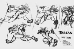 TarzanModelSheet29