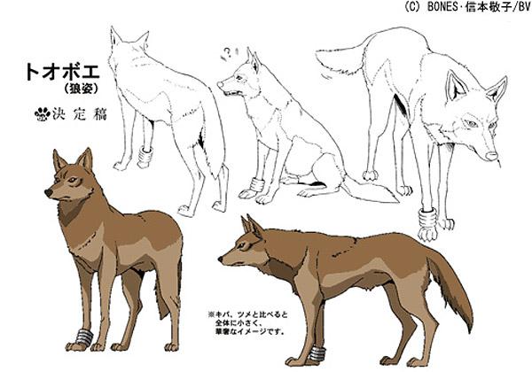 WolfsRainModelSheet22