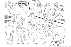 WolfsRainModelSheet10